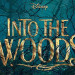 Reseña: INTO THE WOODS ★★½☆☆☆