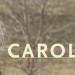 Reseña: CAROL ★★★★☆