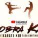 Reseña: COBRA KAI
