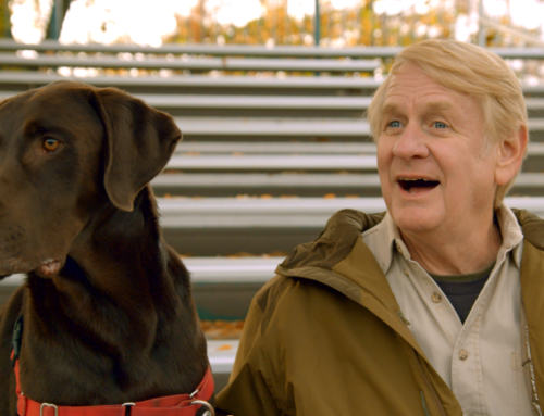 Entrevista: Bill Farmer – IT'S A DOG'S LIFE